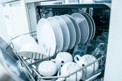 bourgoing-plumbing-dishwashers-garbage-disposal